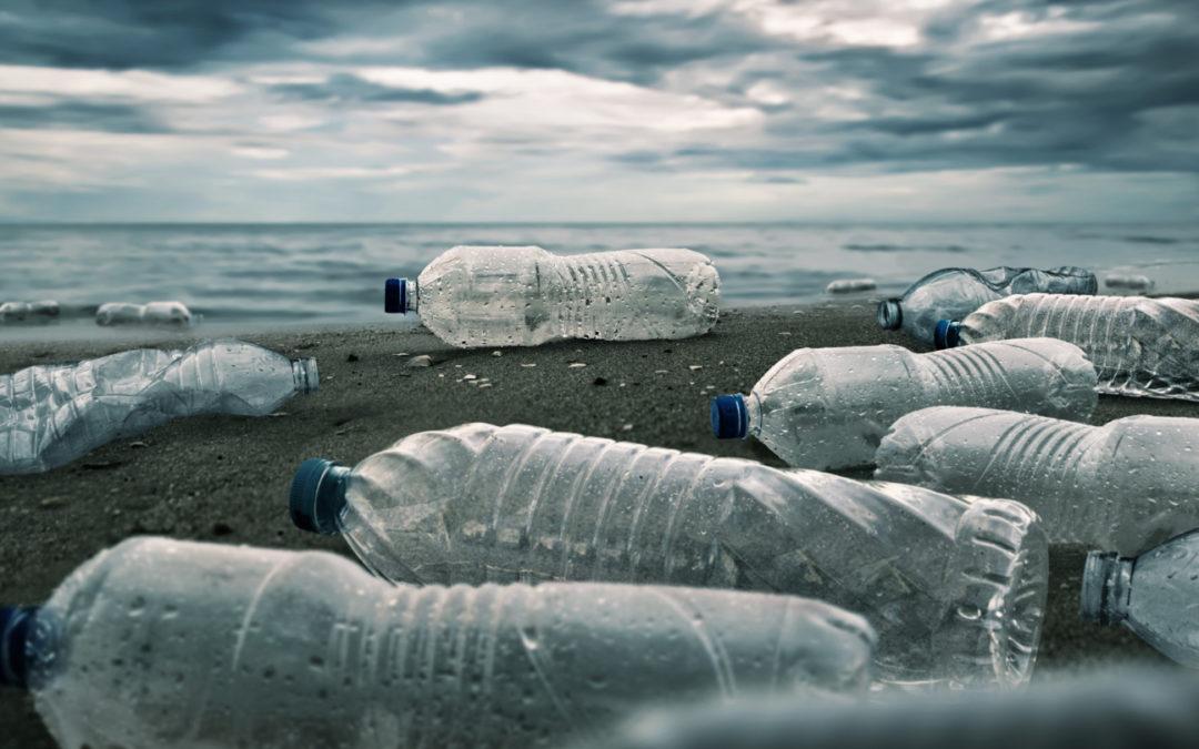 ERP Infor na indústria de embalagem em tempos de sustentabilidade: tendências e soluções